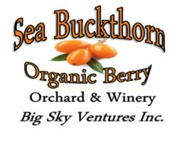 Sea buckthorn logo